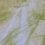 Kodak E160G Beispielbild 02