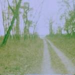 Kodak E160G Beispielbild 03